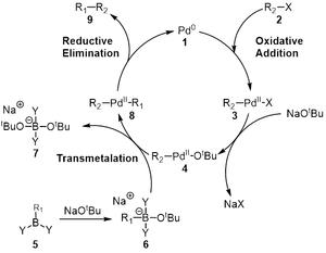 Akira Suzuki (chemist) - Suzuki Coupling Full Mechanism 2