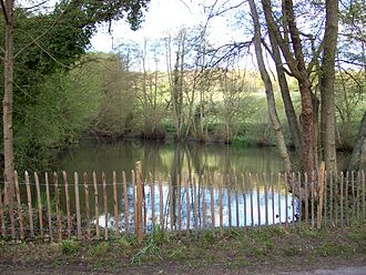 Wateringbury Stream - Swanton Valley pond