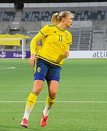 Sweden - Denmark, 8 April 2015 (16465110944).jpg