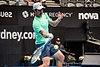 Sydney International Tennis ATP 250 (46915300781).jpg