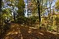 Tapis de feuilles sur une passerelle (22507338948).jpg