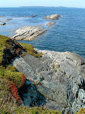 Shore - The rocky shoreline of Taylor Head Provincial Park in Eastern Shore, Nova Scotia, Canada