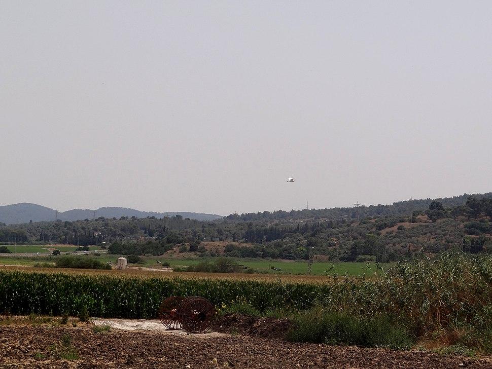 Tel Zarik (4)