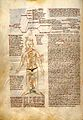 Text on astrological influence of the body Wellcome L0029321.jpg