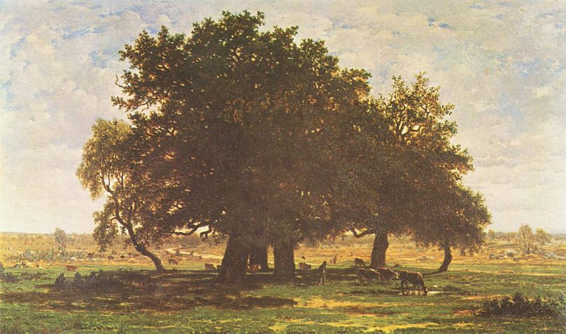 800px-Théodore_Rousseau_003.jpg