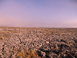 The Burren in the evening sun.JPG