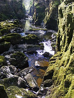 The Fairy Glen - geograph.org.uk - 1373306.jpg