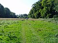 The Monarch's Way and Sussex Border Path - geograph.org.uk - 945869.jpg