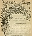 The book of garden management - Comprising information on laying out and planting gardens.. ((1862?)) (20389510962).jpg