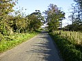The country lane that runs through Dalby - geograph.org.uk - 272106.jpg