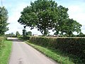The lane near Little Farm - geograph.org.uk - 44290.jpg