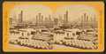The levee and railroad station, from Robert N. Dennis collection of stereoscopic views 2.png