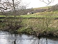 The north bank of the River East Allen near Bridge Eal - geograph.org.uk - 716719.jpg