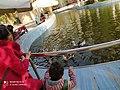 The pond of Aquarium Grotto Garden.jpg
