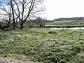 The river Stour where the footpath emerges from Westbere Marshes - geograph.org.uk - 371251.jpg