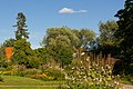 The southeastern part of the botanical garden of Lund, 23.08.2016.jpg