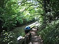 The way down to the Grand Union Canal near Tring Station - geograph.org.uk - 1340342.jpg