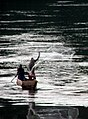 Throw net fishing on the Nile, Jinja.jpg