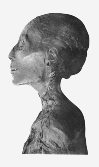 Thutmosis IV mummy head profile.png