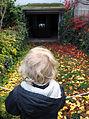 Timm Ulrichs Videofilm WASCHPROGRAMM, statt Open-Air- zieht das Under-Water-Kino das Kind in den Bann, Wintergärten V - H2O in der Güntherstraße Hannover, b.jpg