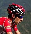 Tour de France 2016, de gendt (28517038071).jpg