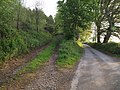 Track into Eastcottdown Plantation - geograph.org.uk - 429961.jpg