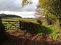 Track off Orestone Lane, Daccombe - geograph.org.uk - 278385.jpg
