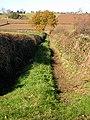 Track to Adzor Bank - geograph.org.uk - 1059123.jpg