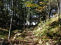 Trail leading to Bobs Lake beside small forest brook - panoramio.jpg