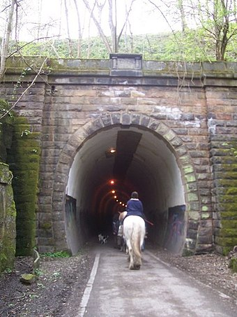 The Trans Pennine Trail passing through the up tunnel Trans Pennine Trail at Thurgoland Tunnel - geograph.org.uk - 1384645.jpg