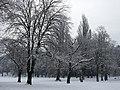 Trees (5277372793).jpg
