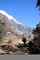 Trekking trail of Langtang.jpg