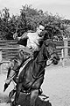 Trick riding (7236464938).jpg