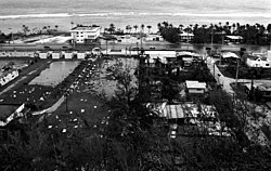 Elevated black and white photograph of businesses surrounding a shoreline road. Though the waves and sea can be seen in the background, floodwaters and strewn debris is visible in the foreground.