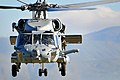 US Navy 100116-N-4774B-343 A SH-60F Seahawk helicopter assigned to the.jpg