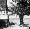 Uitzicht over zee vanaf Fort Zeelandia in Paramaribo, Bestanddeelnr 252-6105.jpg