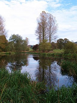 Upper Lake, Londesborough Hall Park - geograph.org.uk - 1564269