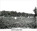 Upton's Potato Field in Dublin New Hampshire (5017919014).jpg