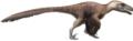 Utahraptor Restoration (flipped).png