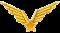 VJ avijcija.png
