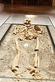Vampire skeleton of Sozopol in Sofia PD 2012 15.JPG