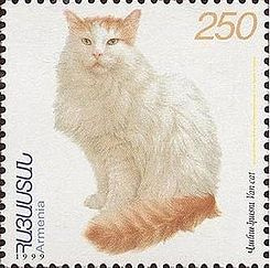 https://upload.wikimedia.org/wikipedia/commons/thumb/5/52/Van_cat.JPG/245px-Van_cat.JPG