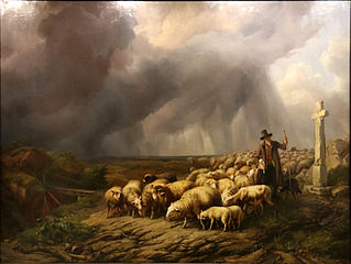 Flock of sheep surprised by the storm