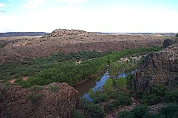 Verde River-Arizona.jpg