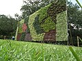 Vertical Garden from Lalbagh flower show Aug 2013 8790.JPG