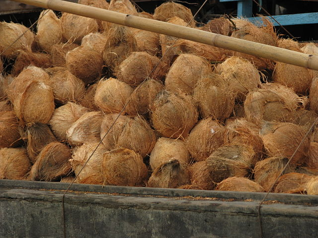 Coco Fibers on Inner Shells in a Market in Thialand