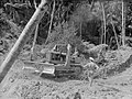 View of an adolescent boy and a man in a bulldozer amid trees (AM 77382-1).jpg