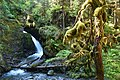 Virgin Creek Falls. Girdwood, Alaska (36758506211).jpg