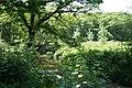 Virginstow, river Carey - geograph.org.uk - 457026.jpg