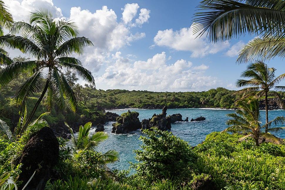 Waianapanapa State Park Maui Hawaii Road to Hana (45690767052)